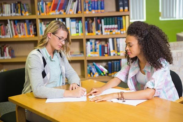 Essay tutors